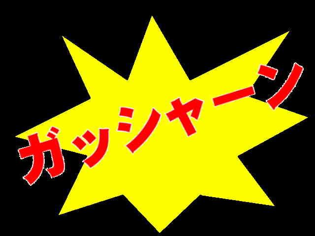 ガッシャーン.JPG