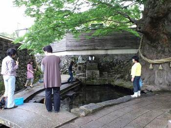 ケヤキ水源「開運の水神様」.JPG