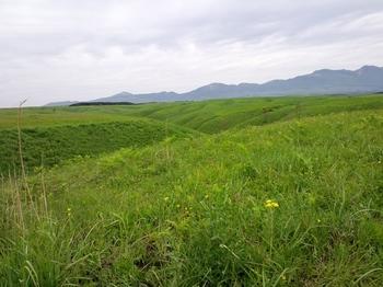 ミルクロードの草原.JPG